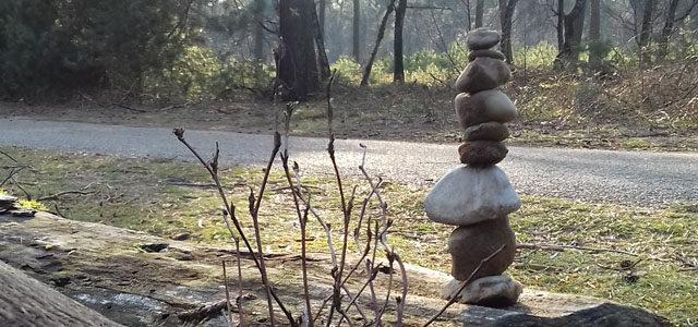 Bouwsels in de natuur (foto)
