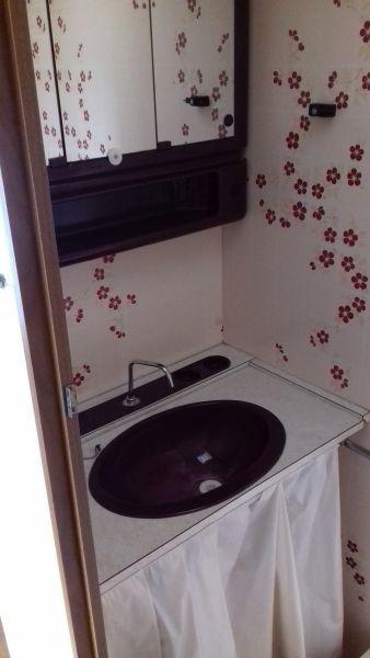 Voor-foto: badkamertje met een wastafel, spiegelkastjes en een chemisch toiletje - deze bloemetjes zijn dus origineel en helemaal in stijl!