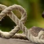 Keuzes, kansen & knopen doorhakken