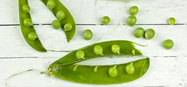 Peas on earth ;)